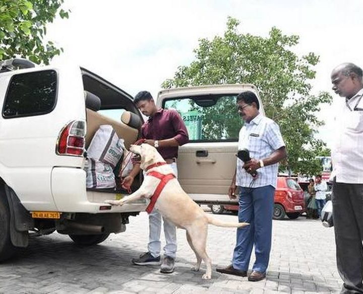 Vehicle checks continue; bags under scanner at railway stations